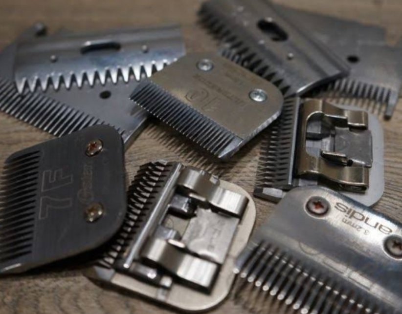 learn to sharpen clipper blades, how to sharpen horse clipper blades, how do self-sharpening clipper blades work, livestock clipper blade sharpening, how to sharpen dog clipper blades, clipper blade sharpening wheel,
